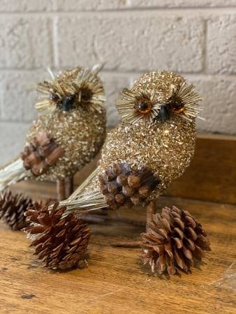 Sparkly Owls